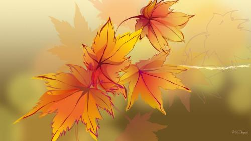 3d-abstract_hdwallpaper_autumn-transparency_25977